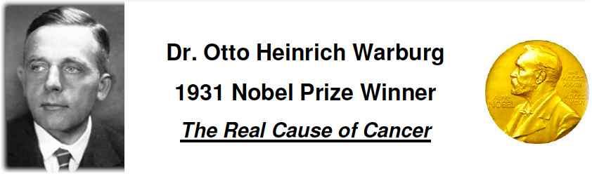 dr otto heinrich warburg1