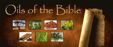 Oils-of-the-Bible